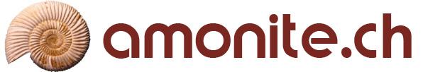 Amonite